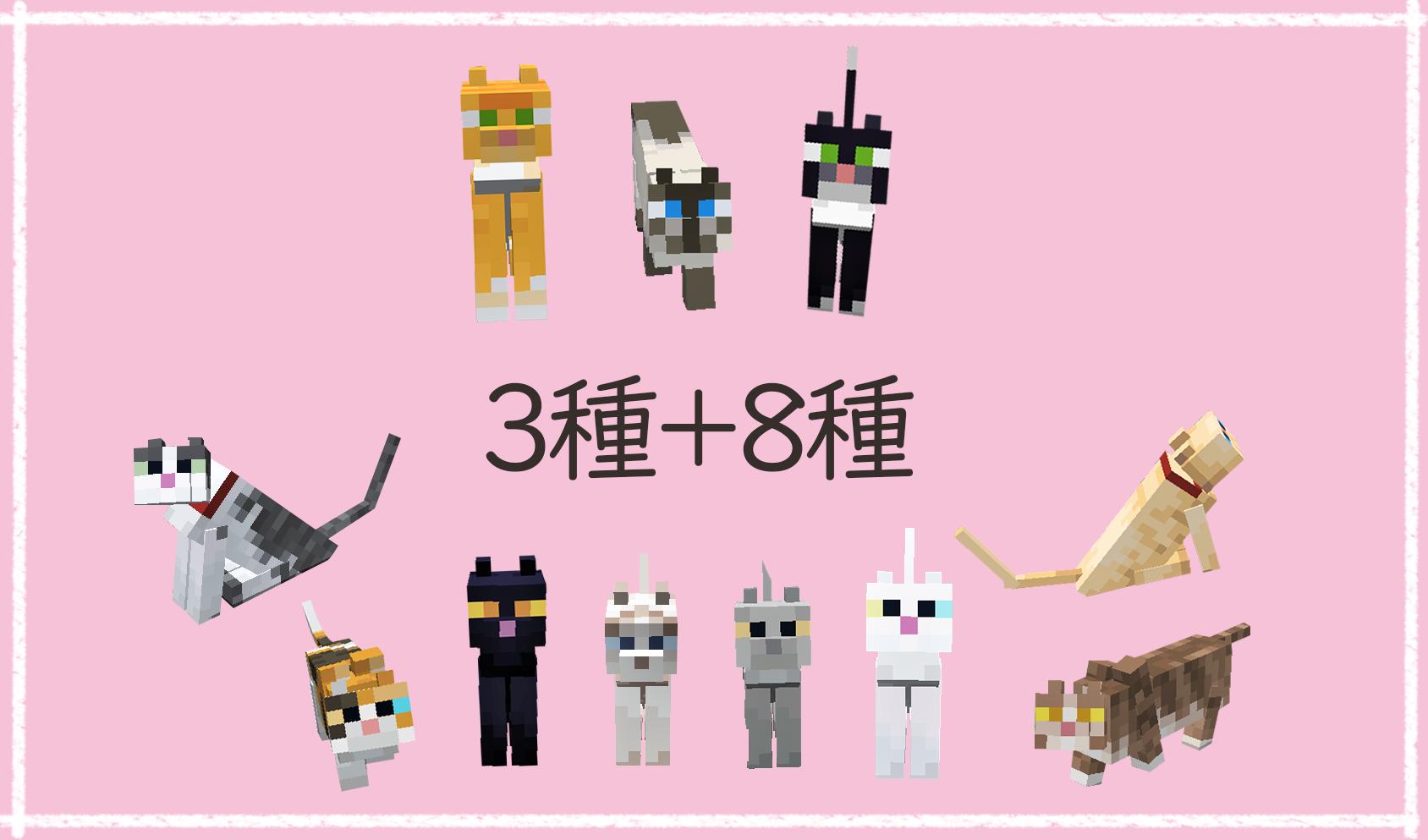 11種のネコちゃん.png