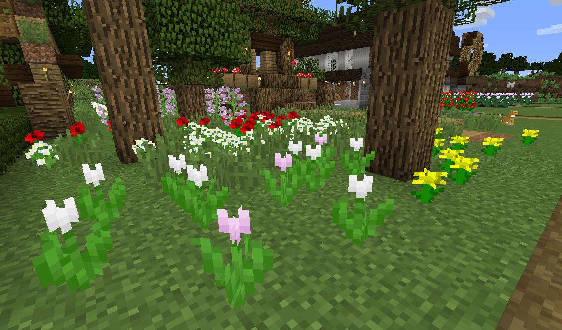 お花畑.png