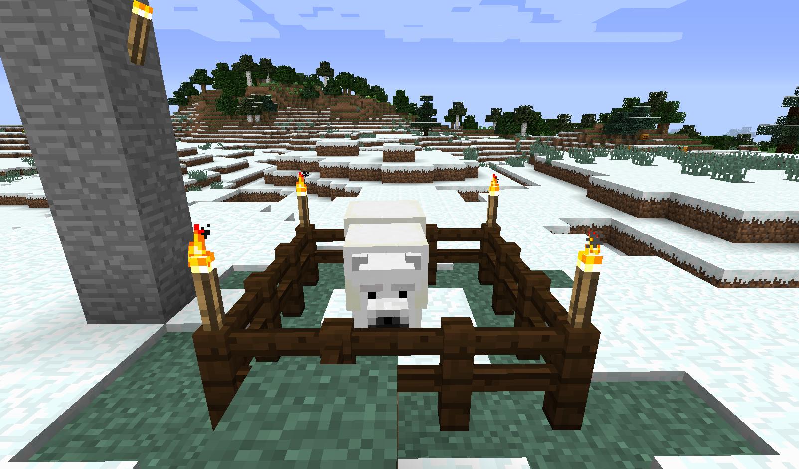クマ発見2.png