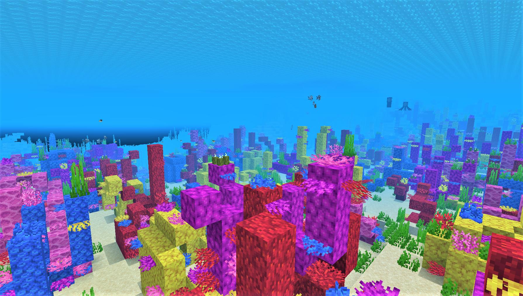 サンゴ礁の海 海中3.png