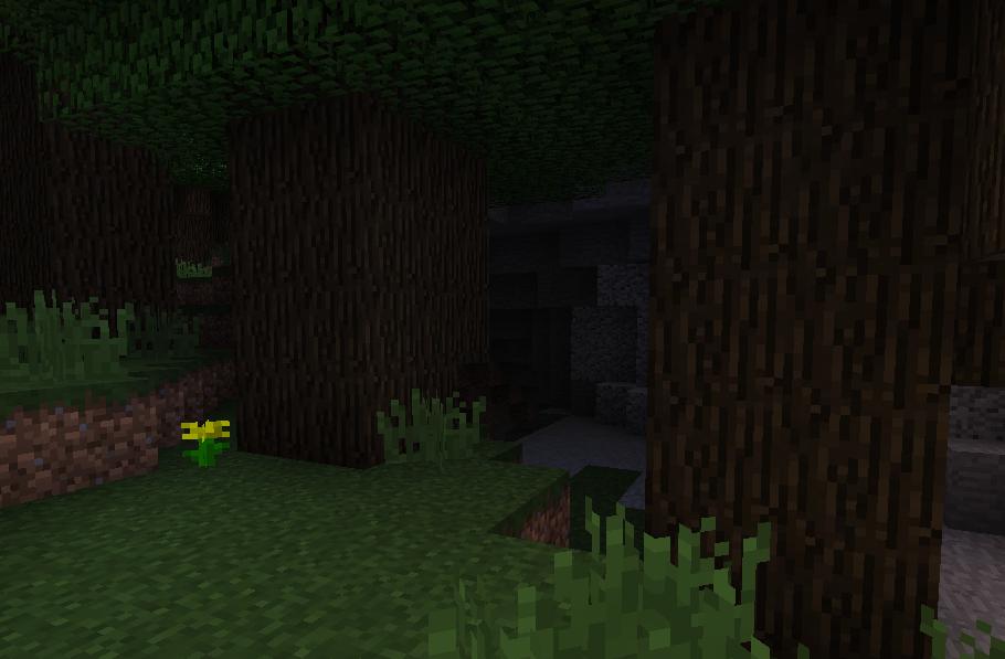 ダークオークの洞窟.png