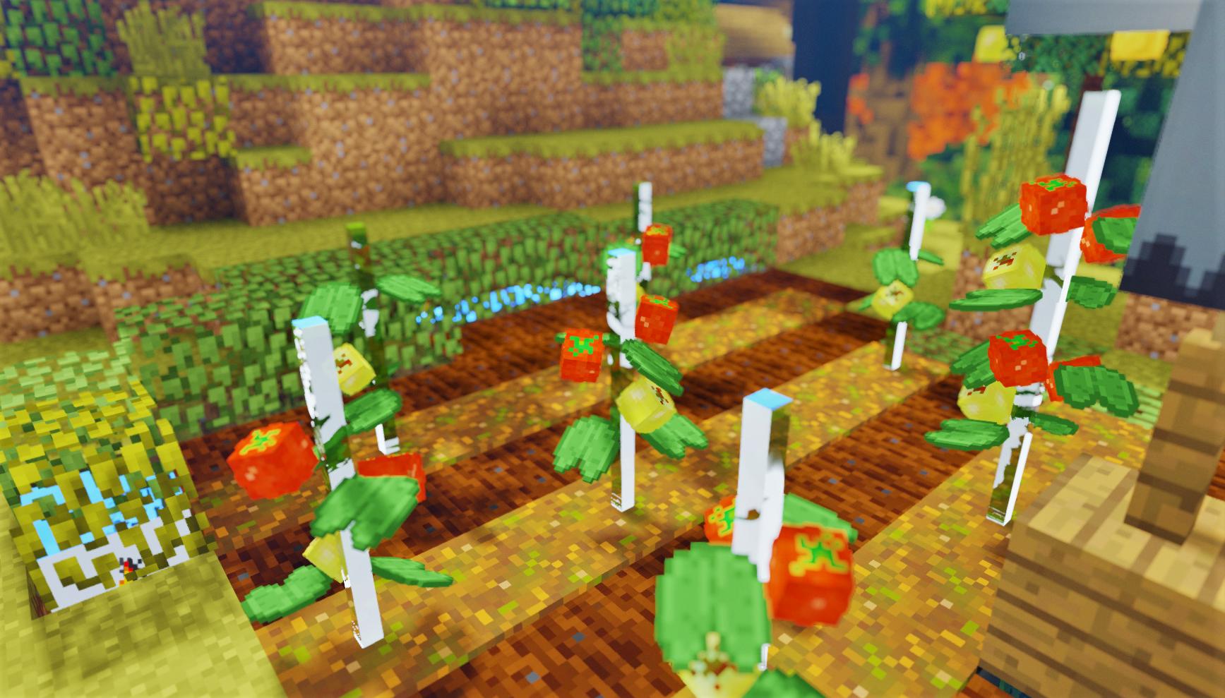 トマト1.png