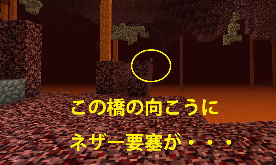 ネザーお散歩Go.png