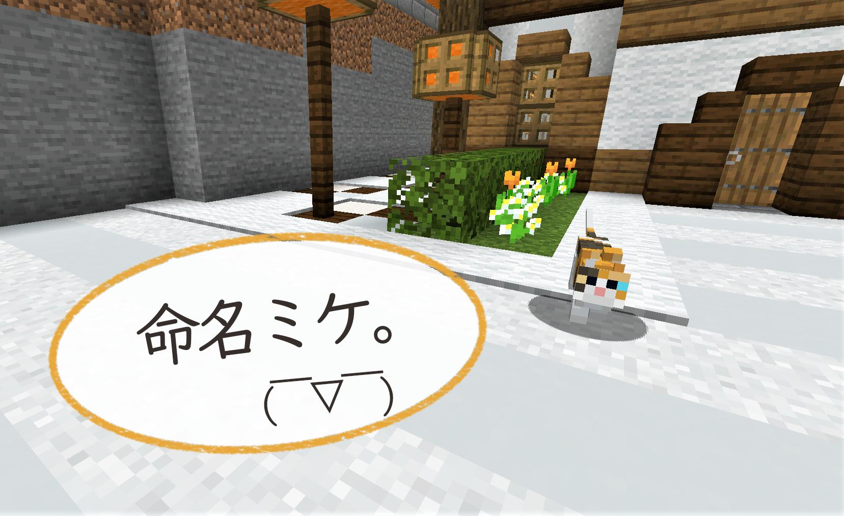 ミケちゃん1.png
