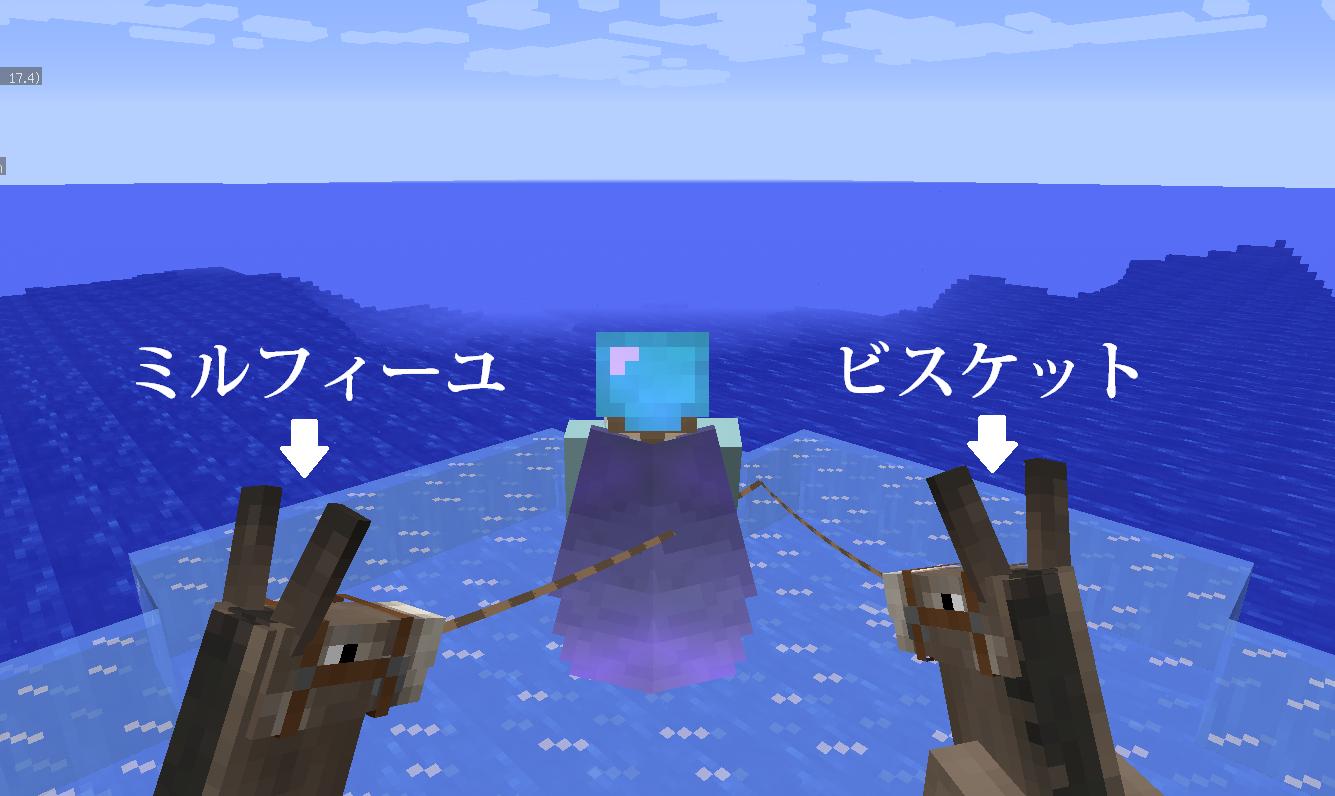 ロバ旅2日目.png