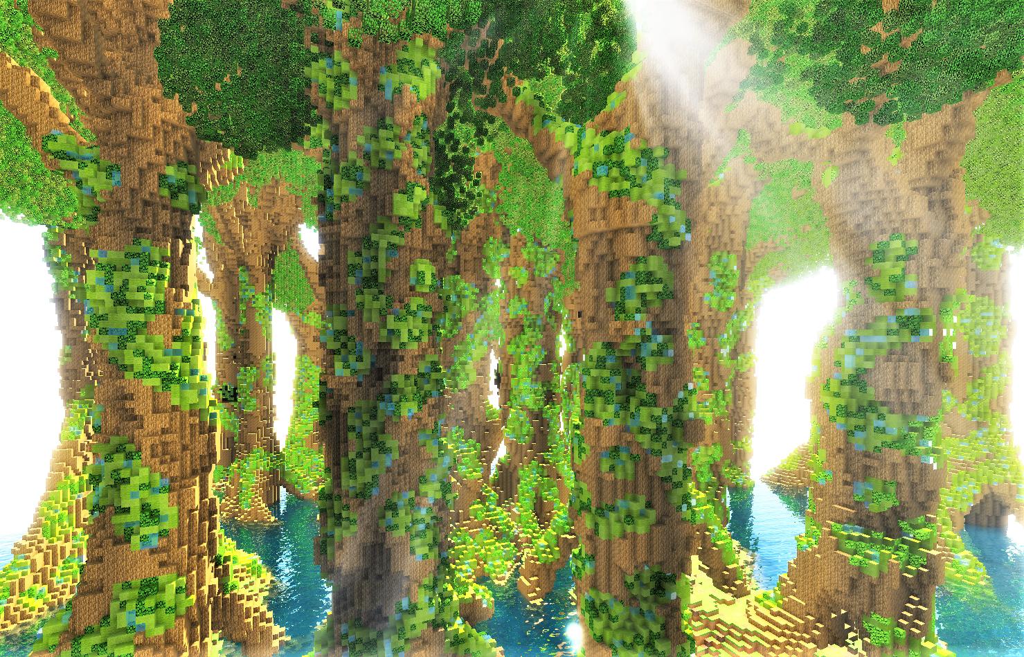 木の肌.png