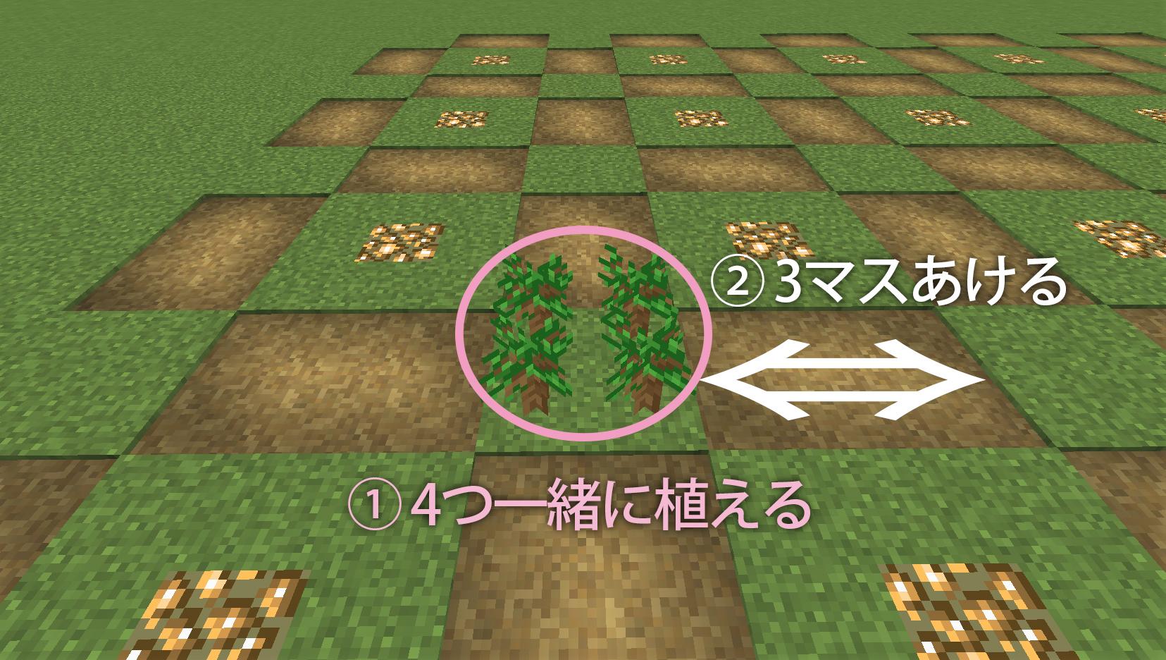 木を植えます3.jpg