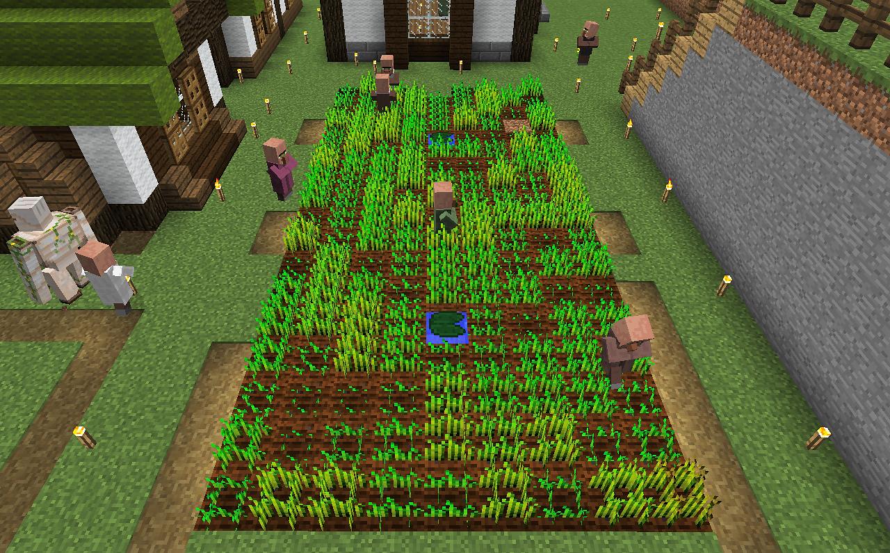 村の畑.png