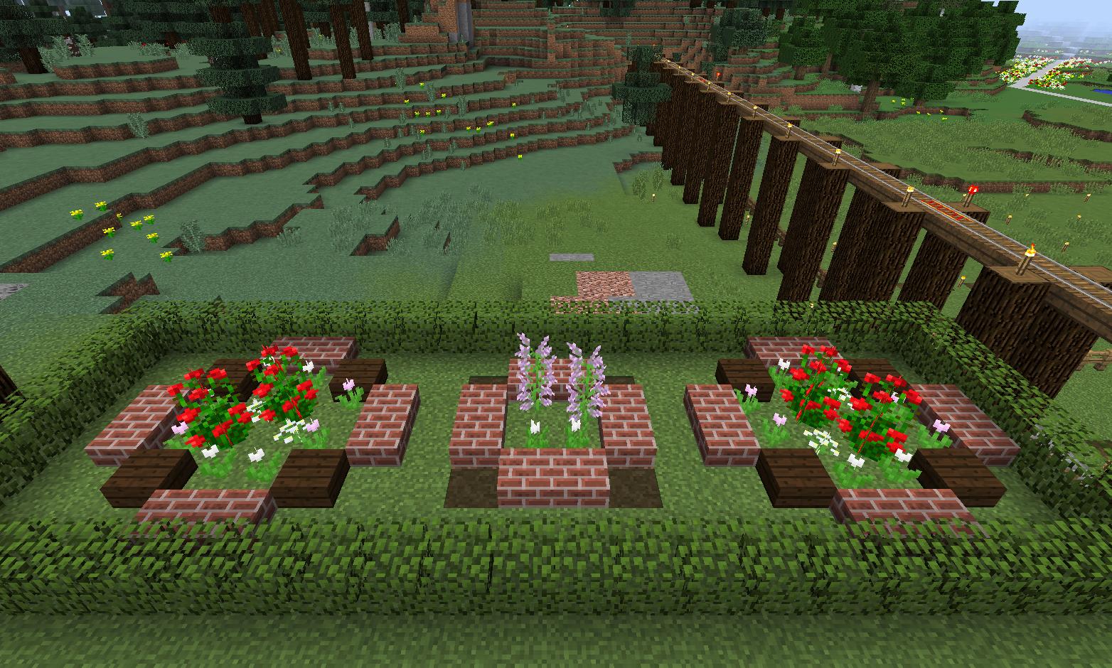 植えた花.png