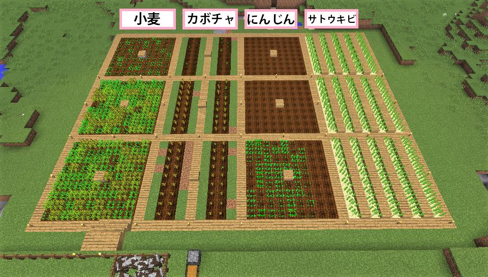 畑.png