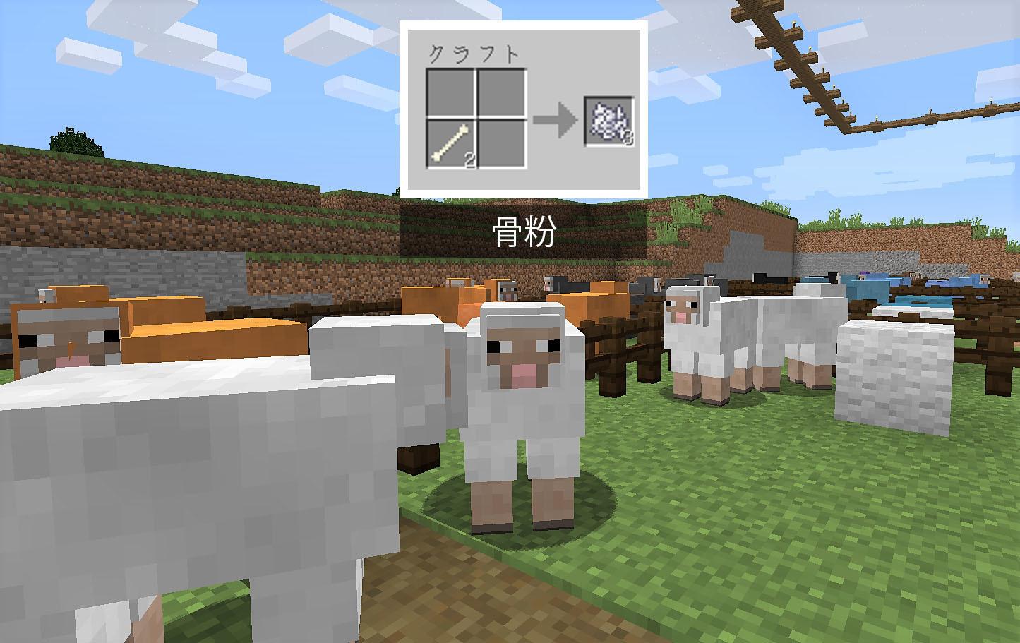 白羊.jpg