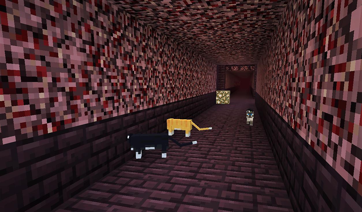 要塞とネコ.png