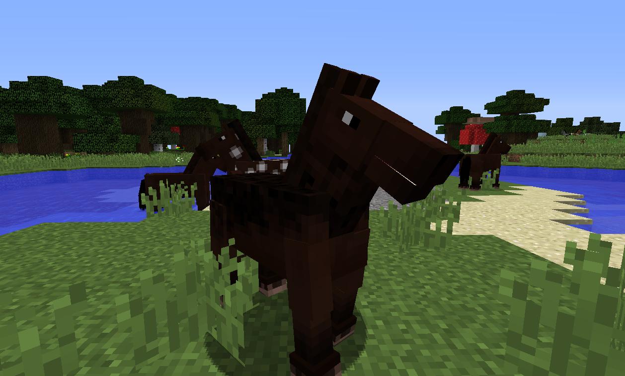 馬の楽園4.png