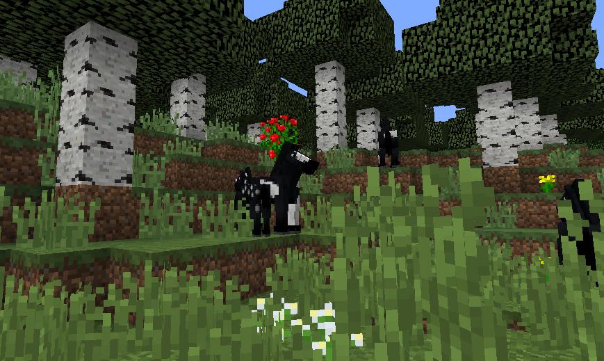 黒に白模様のお馬さん.png