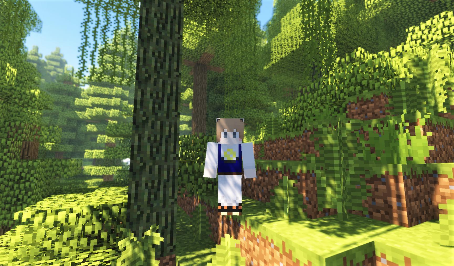 Temperate Rainforest 木がいっぱい2.png